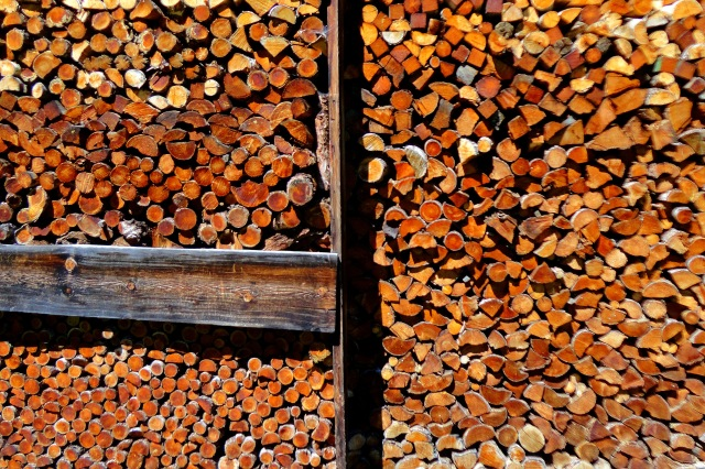 'Wood is wealth,' as my friend Elmer likes to say.