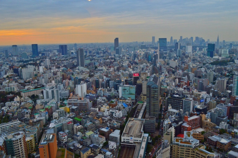 cc8ace158 Tokyo: The Metro Maze, Persimmons and A Couple of Quaint ...