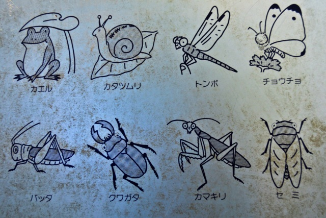 Just in case you were curious about what types of ferocious insects and bugs live in the parks in Tokyo...